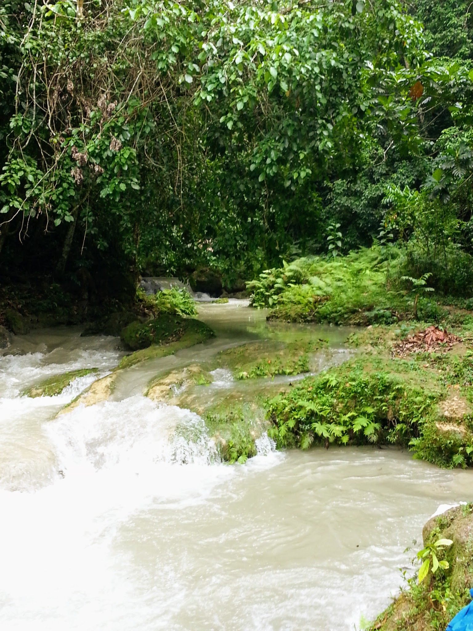 Blue Hole St Mary Jamaica